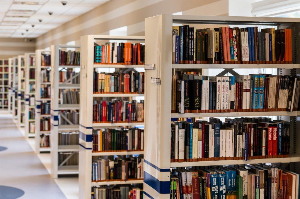 Literaturrecherche für die Bachelorarbeit, Recherchedatenbanken